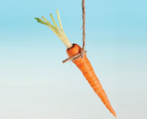 Fitness Carrot or Stick Debate