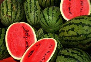 Watermelon Grudge & Loyalty Lessons