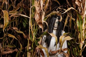 Monster in a Corn Field