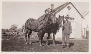 George Sprague with Work Horses